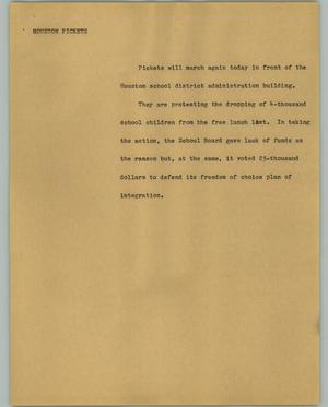 Primary view of object titled '[News Script: Houston Pickets]'.