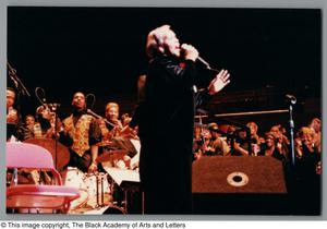 Primary view of object titled '[Black Music and the Civil Rights Movement Concert Photograph 4]'.
