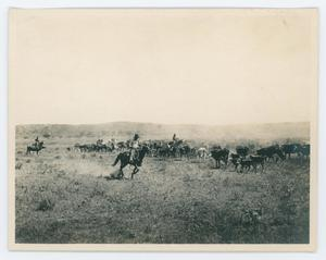An old photo of a man riding on a horse. Behind them are more horses and cattle. Another man in a horse is seen on the far left.