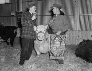 [Layne Beatty with the champion steer]