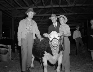 [Layne Beatty with a cow]