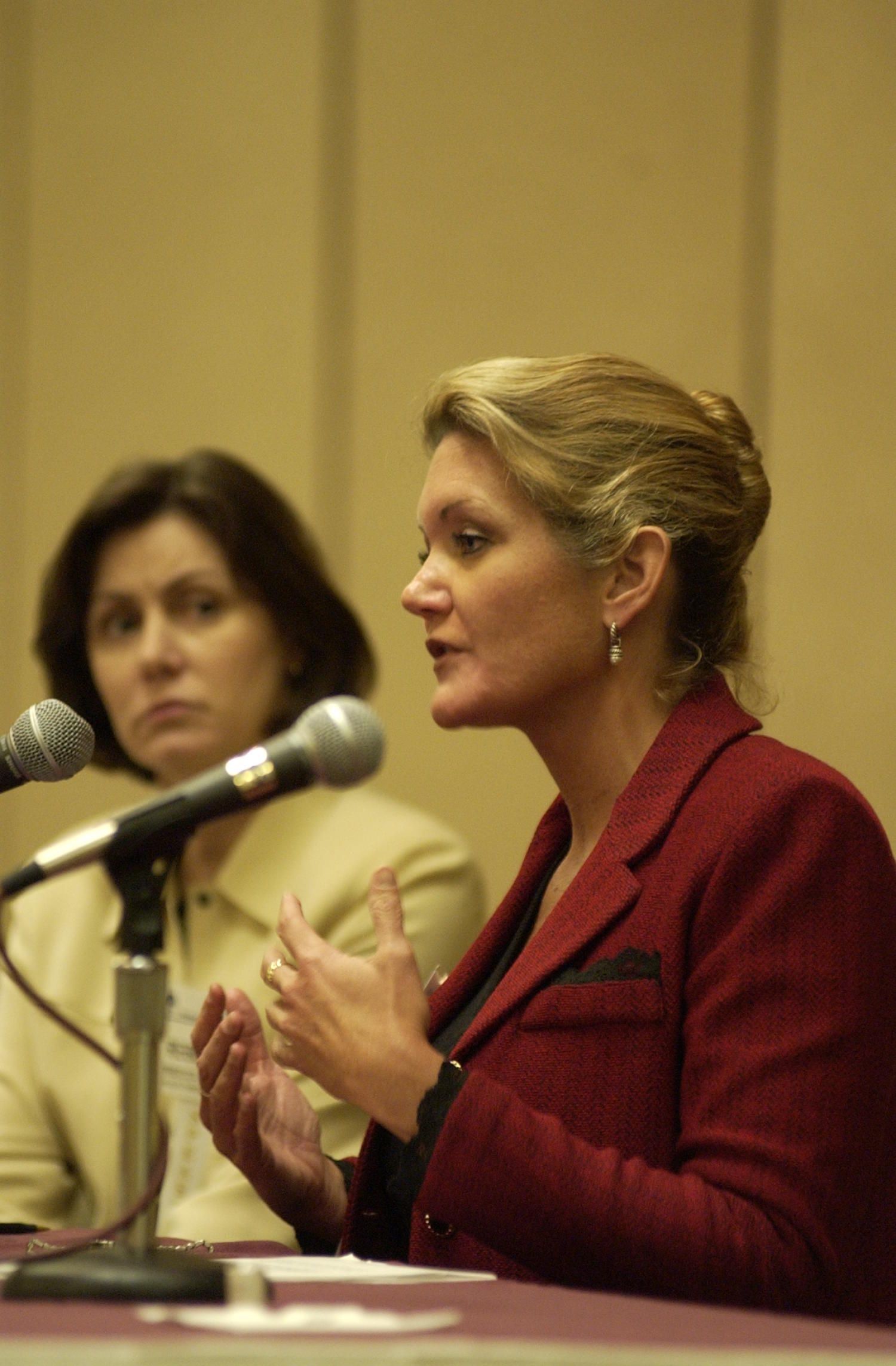 [Rebecca Baldwin at TDNA conference], Photograph of Rebecca Baldwin (left) and an unidentified woman in red, guest speakers attending the 2004 Texas Daily News Association annual conference held in Corpus Christi. The woman in red is leaning forward to speak directly into the microphone and using her hands as emphasis as she speaks.,