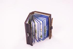 A small leather bound book. The inside is the pages lined in blue. The pages also have paintings inside of it.
