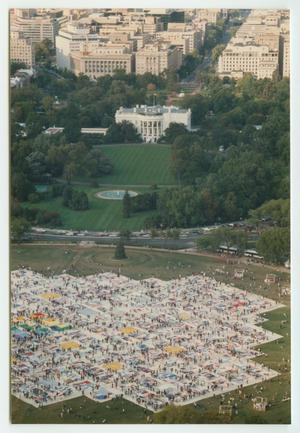 View of the quilt memorial display, trees seen in the background and then a bunch of white buildings beyond that.