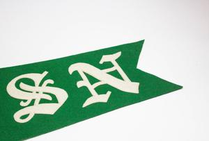 Partial view of a green triangular banner. From this view the letters S and N can be seen.