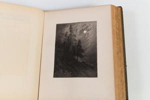 Right page of an open book. The page is mostly white, with a rectangular grey drawing of a forest in the moonlight. The moon is small and white, covered by fog.