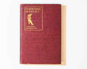 Bright red book cover, the top left of it containing a gold box with the title inside it. There is also a gold design of a hand holding a torch.
