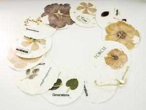 White paper circles are laid out in a ring, with dried plants and/or flowers on them with small titles, all tied together by string.