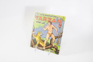 A book cover with an illustration of Tarzan, a man in only a Speedo, standing on a tree branch while a leopard is right next to him. Tarzan holds a knife in one hand. The title of the book is at the top.