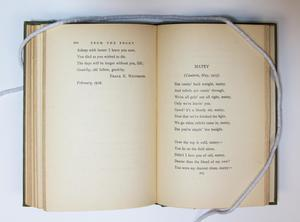 An open book, the page on the left containing a bit of text at the top. The page on the right containing a poem titled Matey.