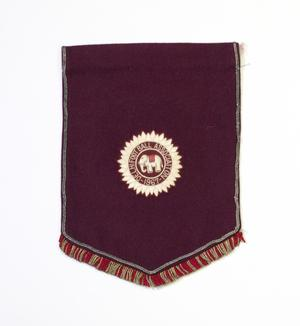 A deep burgandy flag, fringed by red and gold thread at the bottom. In the middle is a white flower like pattern, in a circle. The middle of it has a small elephant and the words Football Association.