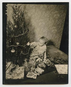 Primary view of object titled '[Douglas Clark prepares for Christmas]'.