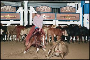 Man in a grey cowboy hat riding a dark brown horse. The horse is charging at a cow in front of him. Other cattle are seen behind them along the wall of a white fence. Three signs for Fort Worth are seen.