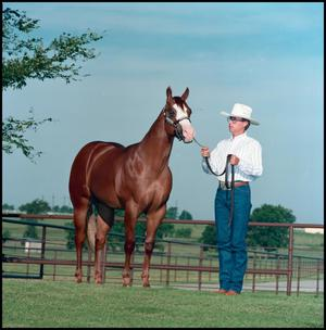 Man in a white shirt and hat holds the reigns of a horse to his right. The horse is a dark brown color with a white spot along its face.