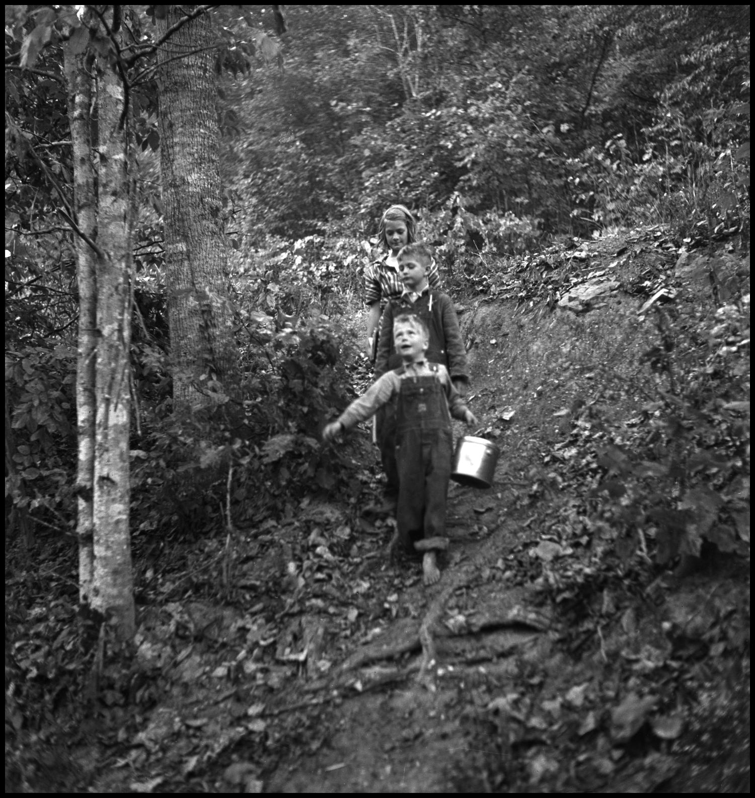 [Children walking along path], Photograph of three children of varying ages walking along a dirt path through a wooded area. The child in the front of the line is barefoot and carrying a lunch pail.,