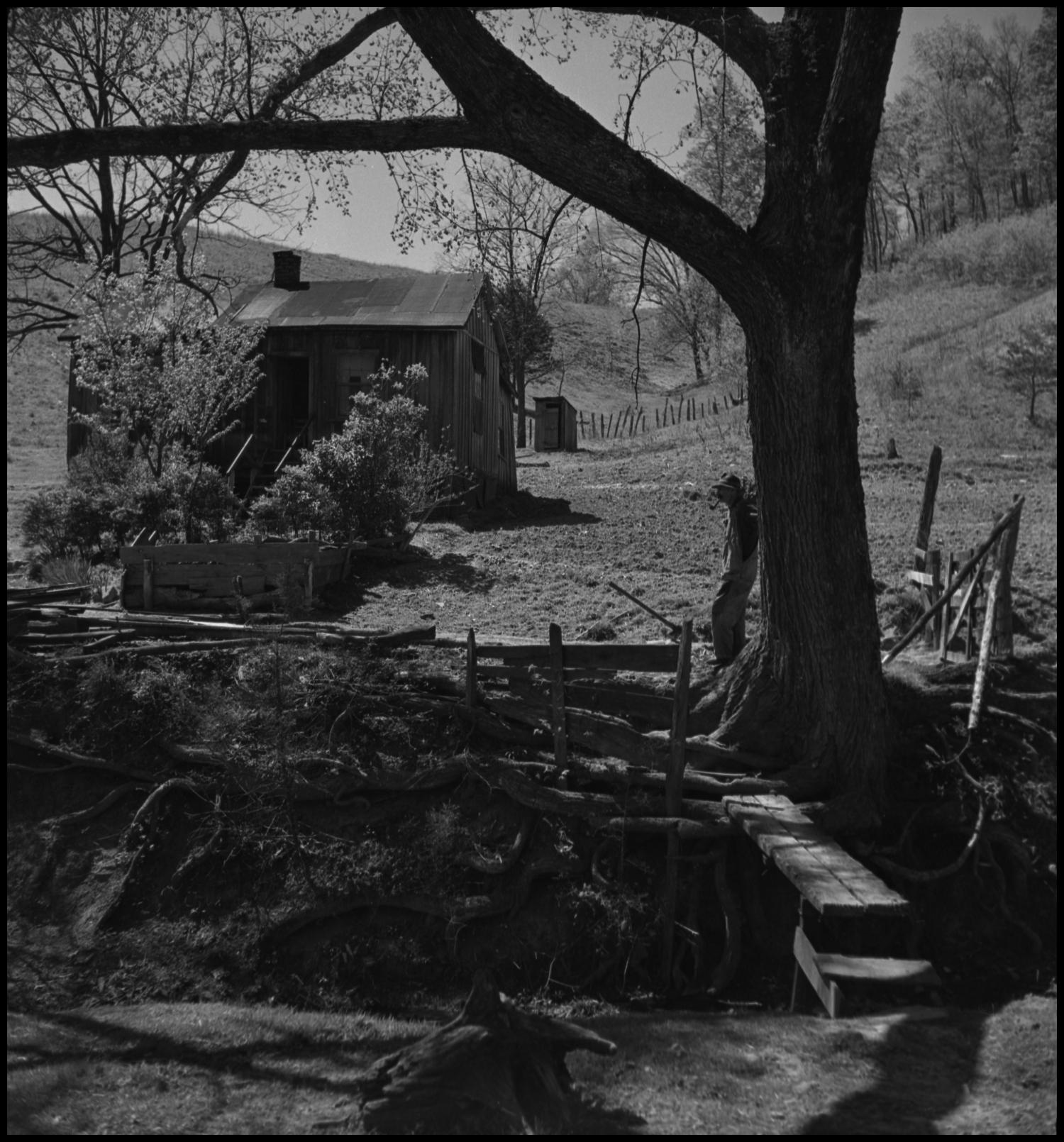 [Farm house scene], Photograph of a man leaning against a tree. The tree is on the bank of a small creek. There is a make shift bridge crossing the creek. There is a farm house as well as an outhouse in the background of the photograph.,