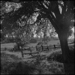 Primary view of object titled '[Fence scene]'.