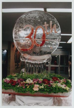 Primary view of object titled '[Ice Sculpture at Gala]'.