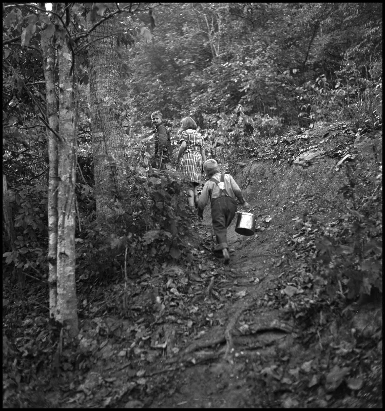 [Children walking along path(1)], Photograph of three children of varying ages walking along a dirt path through a wooded area. The child in the front of the line is barefoot and carrying a lunch pail.,