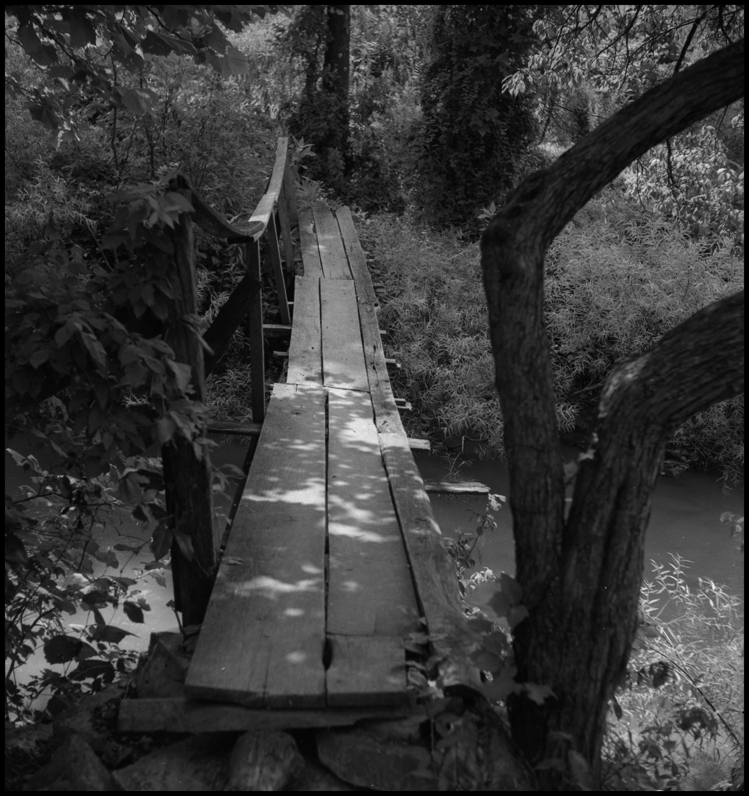 [Wood bridge], Photograph of a small wooden bridge. In the image, the bridge has safety bars on only one side over a small tree covered creek.,