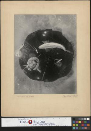 Primary view of object titled '[Fish-Eye View]'.