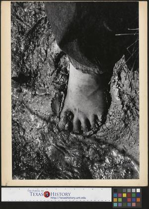 Primary view of object titled '[Cool spring mud between his toes]'.