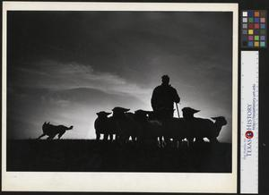 Primary view of object titled '[Silhouette of a Man, Dog, and His Sheep]'.