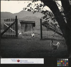 Primary view of object titled '[The Gate to Grandpa's Outhouse (3)]'.