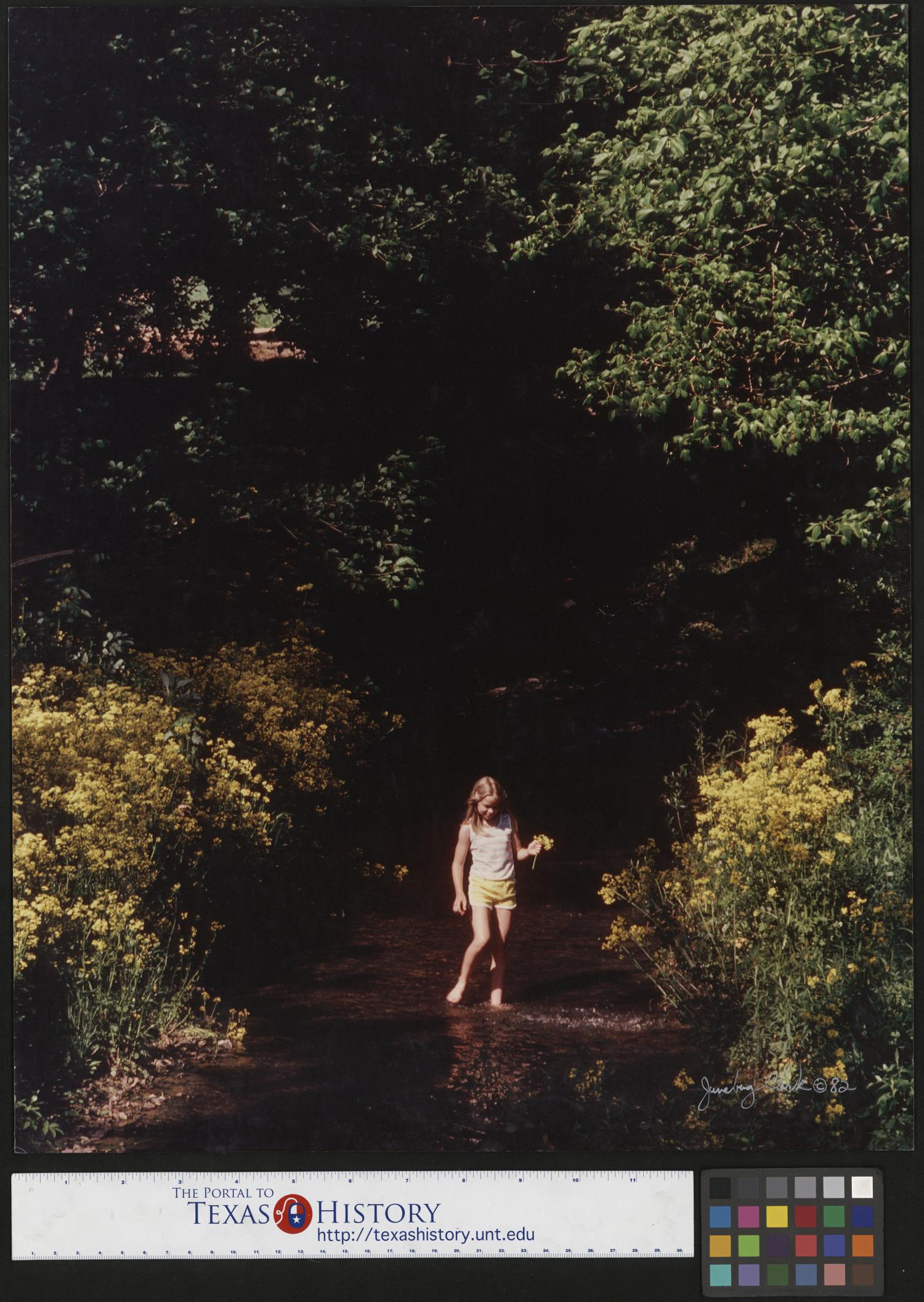 """[Young Girl wading in Mulberry Creek], Photograph of a young girl standing in a creek with flowers in her hand. In this image, the girl is surrounded by yellow flowers, and trees above and behind her. """"Junebug Clark © 82"""" is signed in the lower right corner. Narrative by Junebug Clark: Kathy Brashears is wading through Mulberry Creek in Lynchburg, Tennessee. Photo by: Junebug Clark. Signed by: Junebug Clark Clark PhotoFile: cn0008-0079,"""