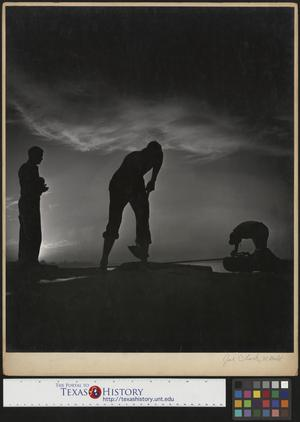 Primary view of object titled '[Three men working at sunset]'.