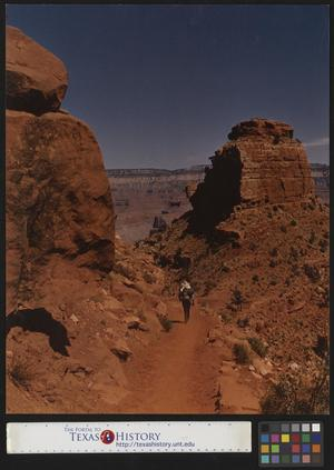 Primary view of object titled '[Man Walking in the Desert]'.