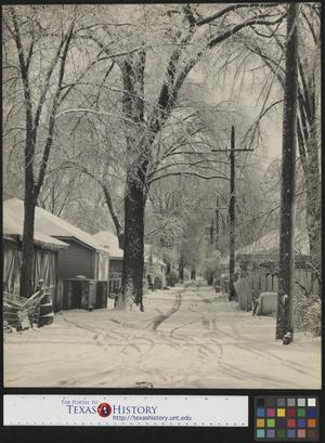 Primary view of object titled '[Snow in Alleyway]'.