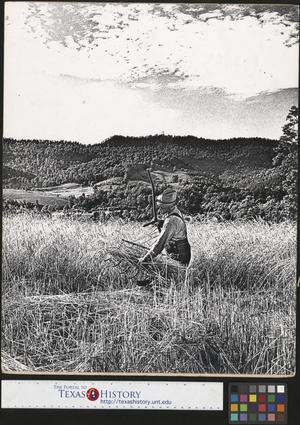 Primary view of object titled '[Man with Farm Equipment]'.