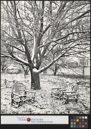 Primary view of object titled '[Snow Covered Lawn]'.