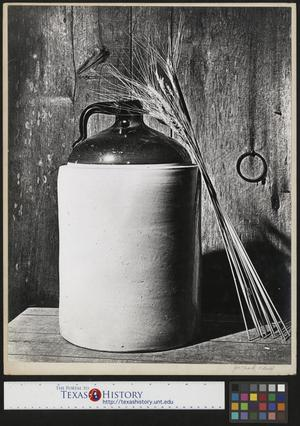 Primary view of object titled '[Grains lean on a jug]'.