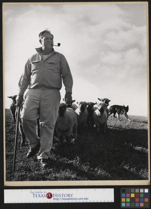 Primary view of object titled '[Man with Sheep]'.