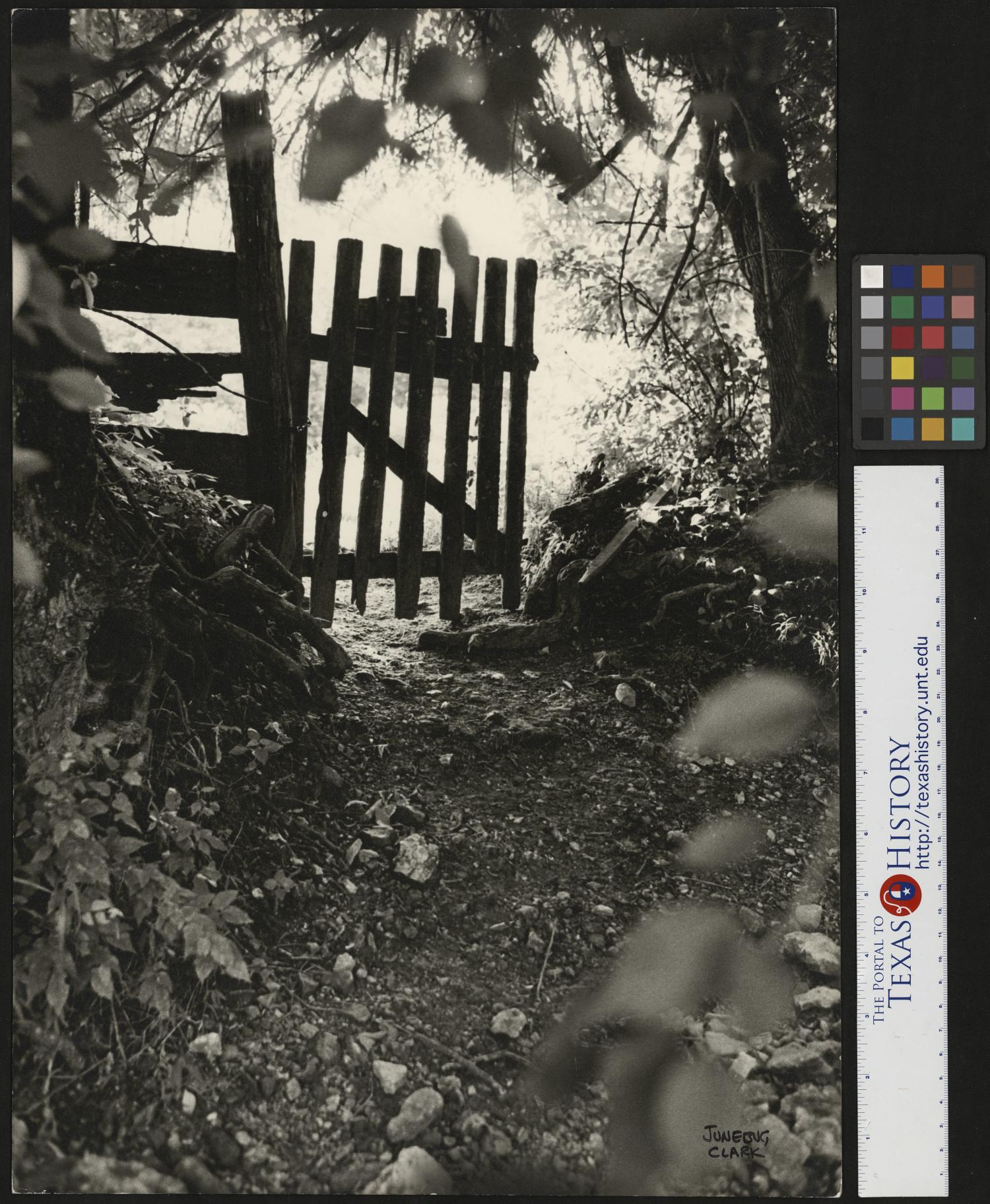 """The Gate to Nowhere and The Gate to Everywhere, Photograph of a handmade wooden gate blocking off a trail through the woods. Junebug Clark narrative: """"The Gate to Nowhere and The Gate to Everywhere"""" always held a form of symbolism to me. As a photographer, I knew no bounds. A closed gate always felt like an invitation that, mostly for good and a rare time or two maybe a little too exciting, I always accepted or was left to wonder what I might have missed. Photo by: Junebug Clark. Signed by: Junebug Clark,"""