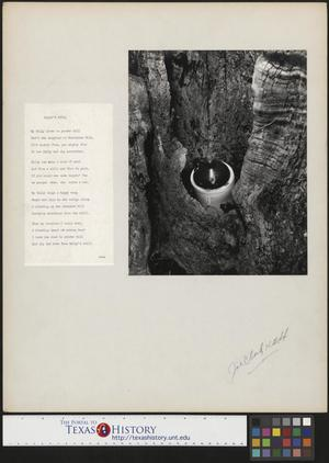 Primary view of object titled '[Moonshine with Accompanying Poem'.