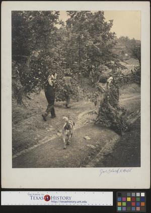 Primary view of object titled '[People carrying branches]'.