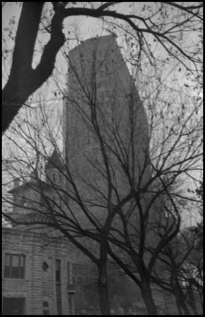 Primary view of object titled '[Building through trees]'.