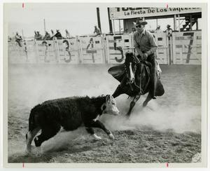 Primary view of object titled '[Tucson Rodeo cutting]'.