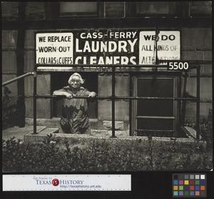 Primary view of object titled 'Case-Ferry Laundry Lady'.