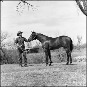 Primary view of object titled '[Yearling colt]'.