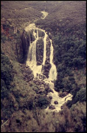 Primary view of object titled 'Waipunga Falls'.