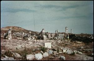 Primary view of object titled 'Delos, Aegean cruise, Avenue of the Lions'.