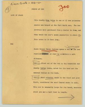 Primary view of object titled '[News Script: Snakes at zoo]'.