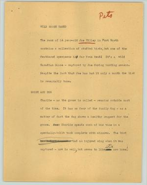 Primary view of object titled '[News Script: Wild goose tamed]'.