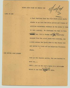 Primary view of object titled '[News Script: North Side upset by unruly cow]'.