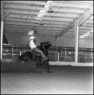 Primary view of [left frame view of cowboy riding rearing horse]