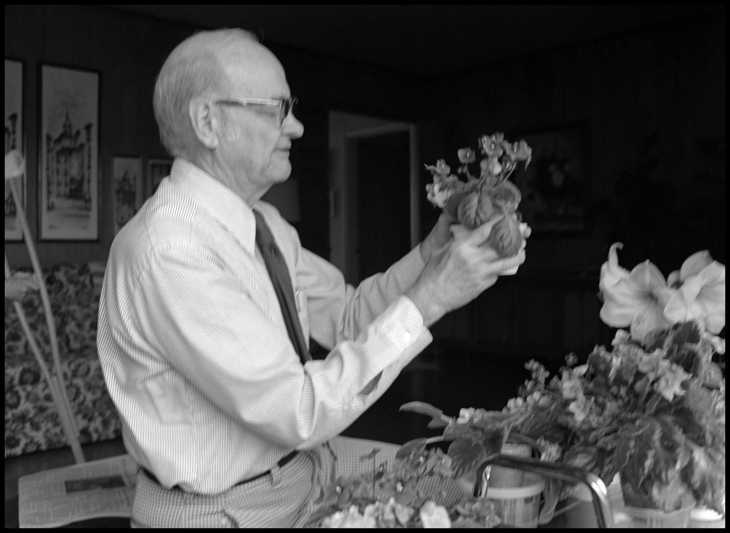 [Garland Brookshear holding pansies], Photograph of Garland Brookshear, a member of the Management faculty at NTSU, holding a potted plant that appears to be pansies. He is being photographed for his retirement.,